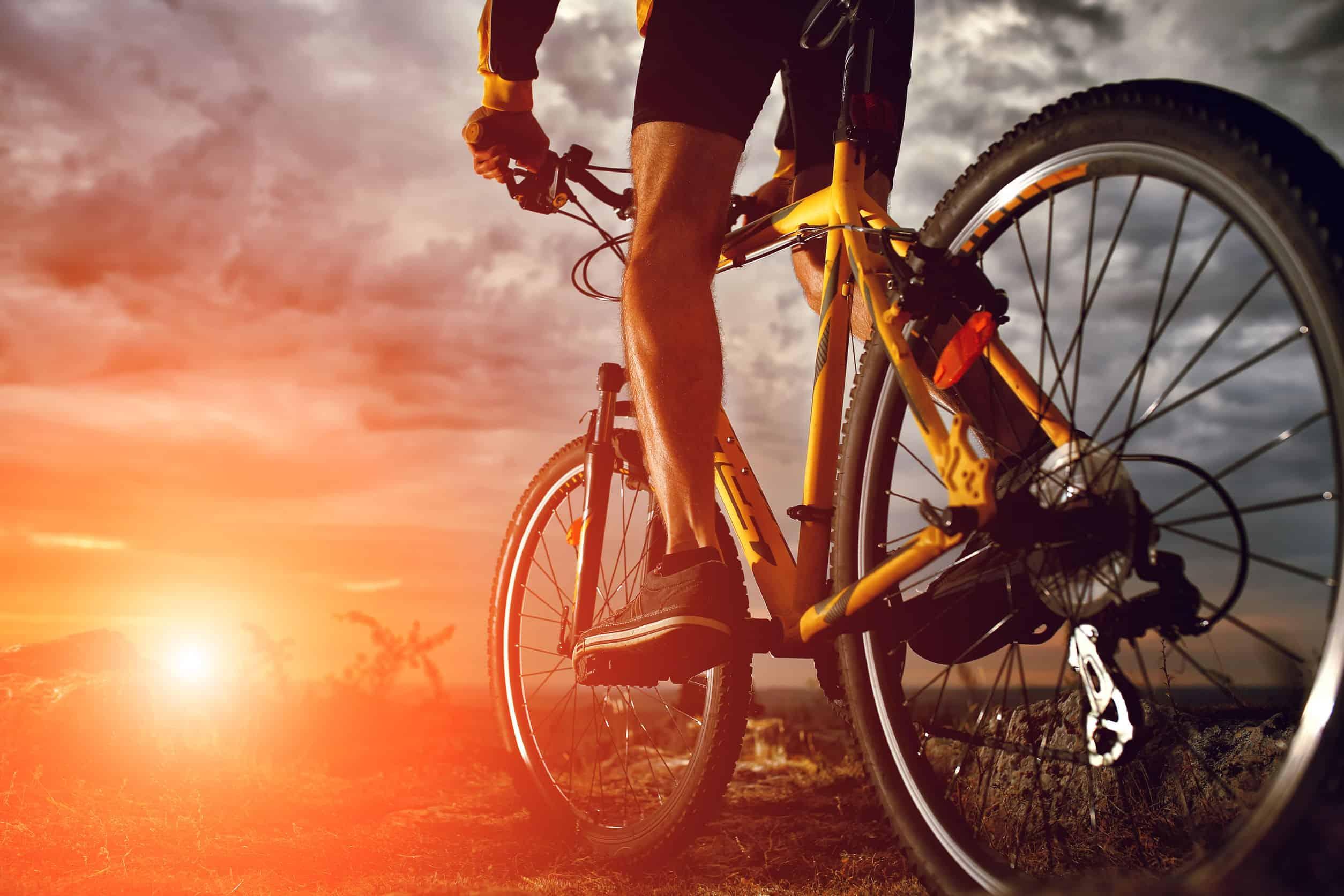 Bicicletas: ¿Cuáles son las mejores del 2021?