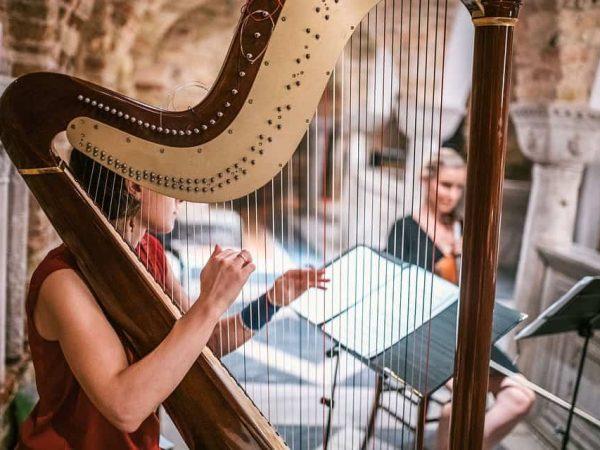 El arpa es un instrumento que pese a su complejidad proporciona sonoridad musical que hipnotiza en cualquier espacio. (Foto: Marino Bocelli/ 123rf.com)