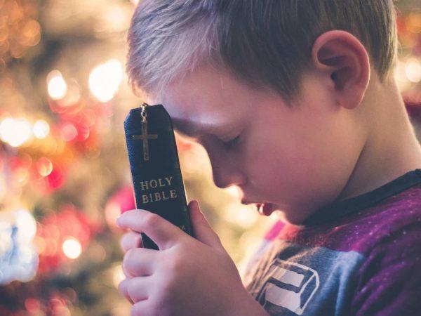 Biblia: ¿Cual es el mejor producto del 2020? | REVIEWBOX