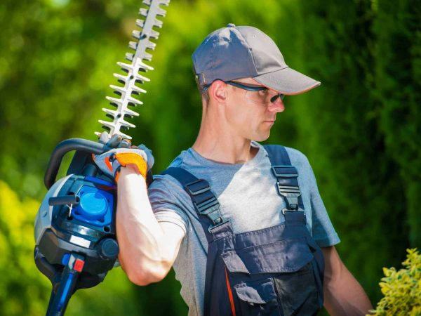 Garden Trimming Works. Professional Gardener in His 30s with Pro Hedge Trimmer Taking Care of the Garden.