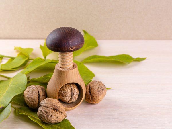 Whole walnuts on wooden table. Walnuts and wooden screw nutcracker. We like walnuts. Advertising on walnuts.