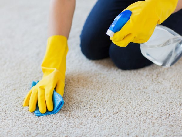 people, housework and housekeeping concept – close up of woman in rubber gloves with cloth and detergent spray cleaning carpet at home